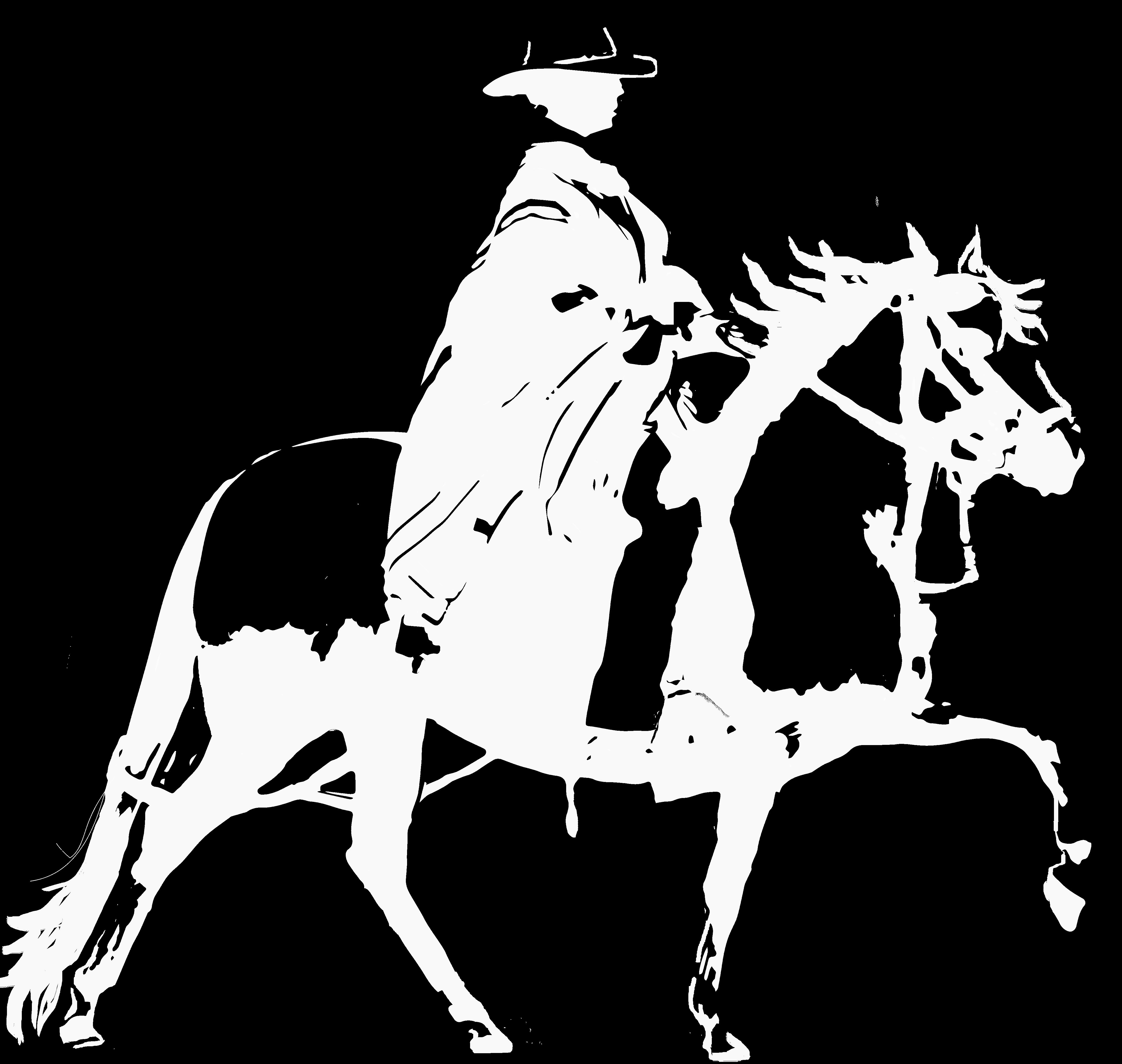 Peruvian.Horse
